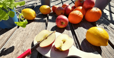 Man sieht auf einer Holzterrasse 3 Kräutertöpfe, ein paar Orangen, Zitronen, Äpfel und einen geschnittenen Apfel auf einem Holzbrett mit einem roten Messer. In der Leberreinigung spielen diese Früchte eine grosse Rolle.
