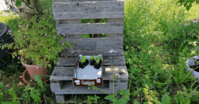 Man sieht im grünen Garten unter einem Baum einen Sitz aus Paletten. Dort steht eine braune Schachtel mit Salatzsetzlingen.
