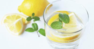 Man sieht ein Glas mit Wasser, Zitronenscheiben und grünen Blättern. Daneben liegt ein Zweig mit grünen Kräutlein und geschnittene und ganz Zitronen. Alles Zutaten für das Zitronenwasser ZIWA.