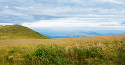 Man sieht eine Berg-Wiese und im Hintergrund Berge und Land.