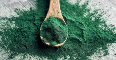 Man sieht grünbläuliches Spirulinapulver auf einem grauen Untergrund und darin liegt ein Holzlöffel mit Spirulinapulver. Spirulina oder Chlorella- was ist besser für die Entgiftung