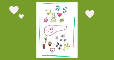 Man sieht die positiven Einflüsse und unten die negativen Einflüsse für die Lebergesundheit. In der Mitte sieht man die Leber gezeichnet. Das gezeichnete Blatt ist auf einem grünem Hintergrund. Es sind drei weisse Herzen zu sehen.