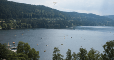 Man sieht den Titisee mit Booten und viel Wald rundherum.